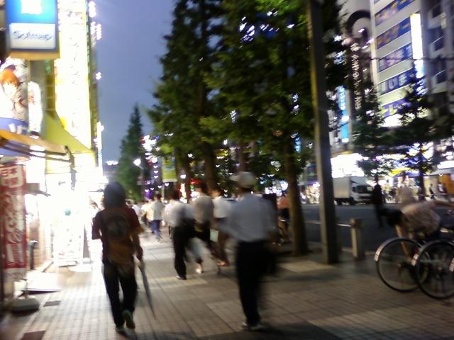 photo 0213