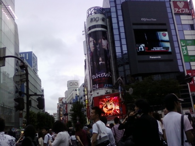 photo 0220